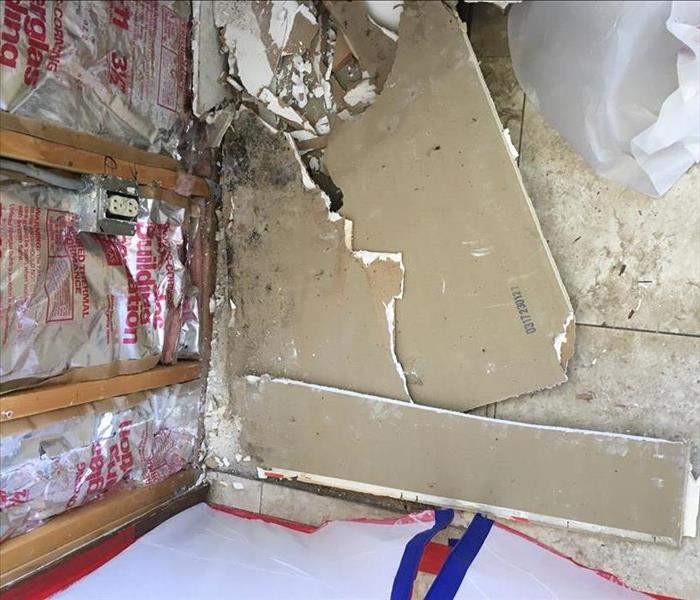 Storm Damage Mold & Containment in Paradise Valley