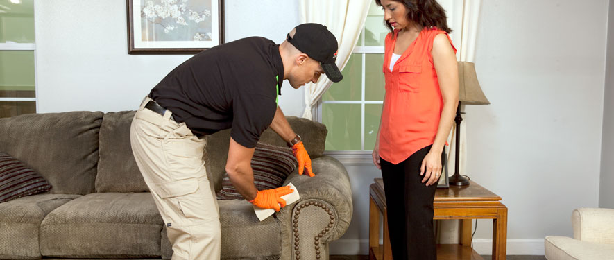 Paradise Valley, AZ carpet upholstery cleaning