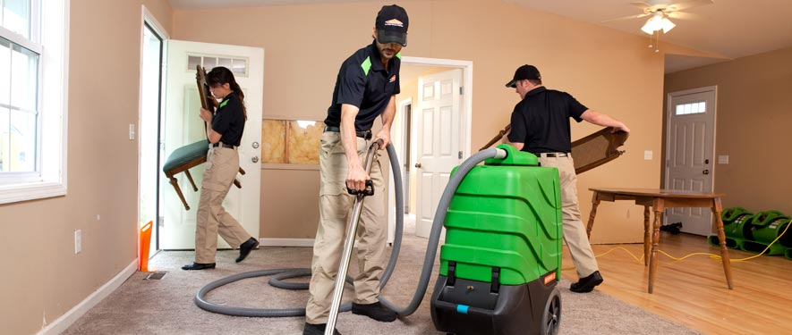 Paradise Valley, AZ cleaning services